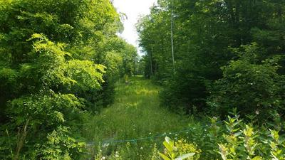- LINCOLN POND ROAD, Elizabethtown, NY 12932 - Photo 2
