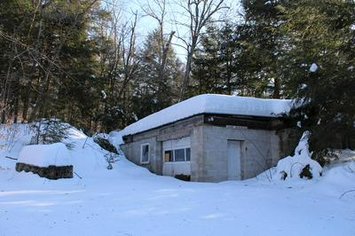 4008 STATE HIGHWAY 30, SPECULATOR, NY 12164 - Photo 1
