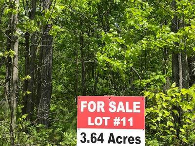 LOT 11 SHIRLEY'S WAY, Ausable Forks, NY 12912 - Photo 1