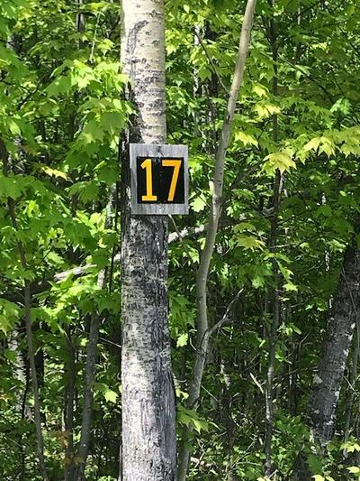 LOT 17 STEVENS LANDING ROAD, Ausable Forks, NY 12912 - Photo 2