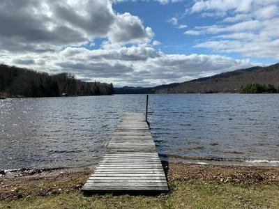 1188 GOODNOW FLOW RD, Newcomb, NY 12852 - Photo 1