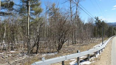 0 WHITEFACE MEMORIAL HWY, Wilmington, NY 12997 - Photo 2