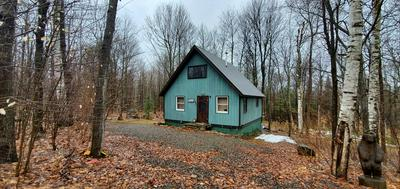 20 COLLINS RD, Black Brook, NY 12985 - Photo 1