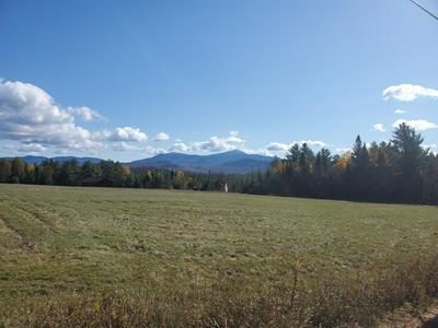 8 NORMAN RIDGE RD, Vermontville, NY 12989 - Photo 2
