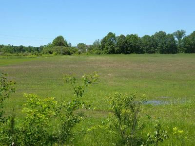0 MASON STREET - LOT #6, Morrisonville, NY 12962 - Photo 2