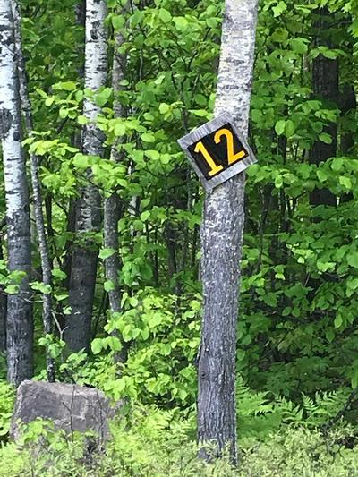 LOT 12 STEVENS LANDING ROAD, Ausable Forks, NY 12912 - Photo 2