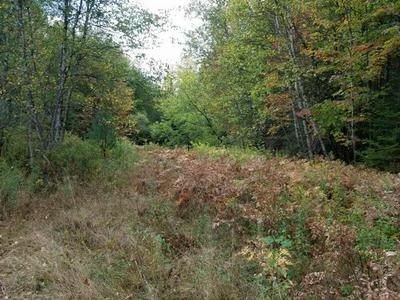 2 LOT GUIDE BOARD ROAD, Black Brook, NY 12985 - Photo 1