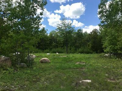 LOT 17 STEVENS LANDING ROAD, Ausable Forks, NY 12912 - Photo 1