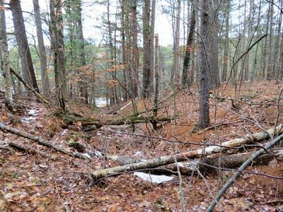 0 SILVER LAKE RD, Black Brook, NY 12912 - Photo 2