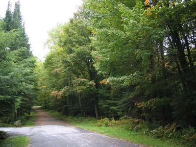 000 BROWN'S TRACT ROAD, Thendara, NY 13472 - Photo 1