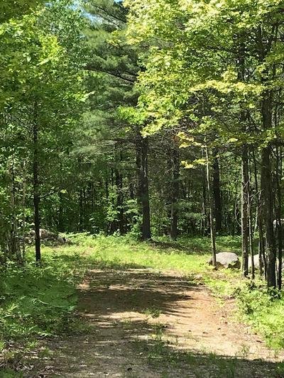 LOT 6 SHIRLEY'S WAY, Ausable Forks, NY 12912 - Photo 2