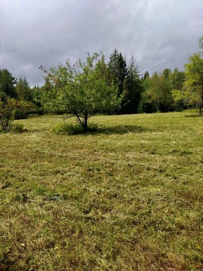 163 FLETCHER FARM RD, Vermontville, NY 12989 - Photo 2