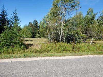 163 FLETCHER FARM RD, Vermontville, NY 12989 - Photo 1