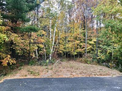 0 SPRING RUN ROAD, Morrisonville, NY 12962 - Photo 1
