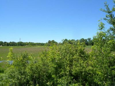 0 MASON STREET - LOT #8, Morrisonville, NY 12962 - Photo 1