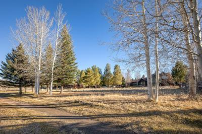 901 CEDAR CRK, Carbondale, CO 81623 - Photo 2