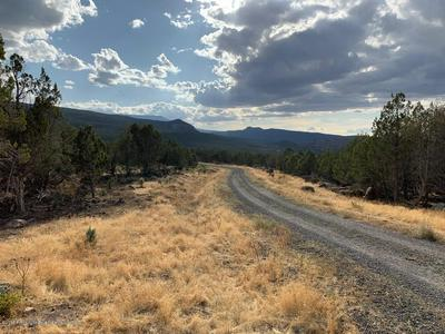 10789 52 1/2 ROAD, Molina, CO 81646 - Photo 2