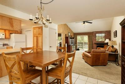 14913 HIGHWAY 82 APT 293, Carbondale, CO 81623 - Photo 1
