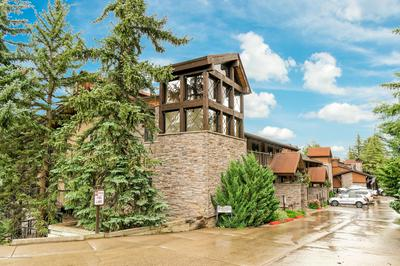 400 WOOD RD APT 2201B, Snowmass Village, CO 81615 - Photo 2