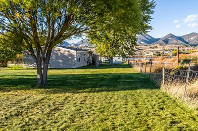 992 COUNTY ROAD 311, Silt, CO 81652 - Photo 2