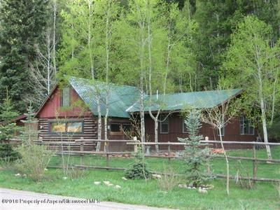 24928 FRYING PAN RD, Meredith, CO 81642 - Photo 1