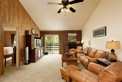 14913 HIGHWAY 82 APT 293, Carbondale, CO 81623 - Photo 2