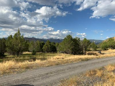 10789 52 1/2 ROAD, Molina, CO 81646 - Photo 1