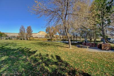 560 33 3/4 RD, CLIFTON, CO 81520 - Photo 2