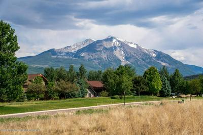 731 PERRY RIDGE RD, Carbondale, CO 81623 - Photo 2