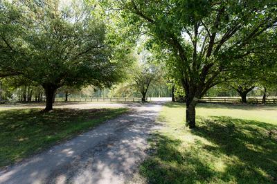 4834 MAIN HWY, BAMBERG, SC 29003 - Photo 2