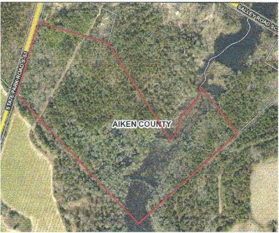 1550 STATE PARK RD, SALLEY, SC 29137 - Photo 1