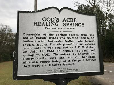 2563 HEALING SPRINGS RD, BLACKVILLE, SC 29817 - Photo 2