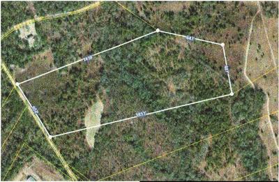 000 CRICKET TREE ROAD, SALLEY, SC 29137 - Photo 1