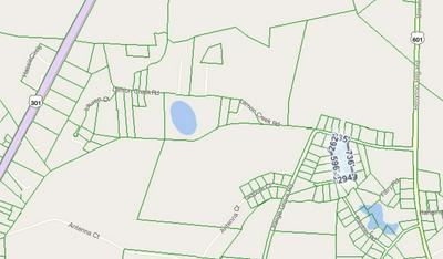 0 ORANGE GROVE ROAD, BAMBERG, SC 29003 - Photo 2