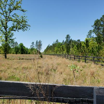 1604 OAK RIDGE CLUB RD, WINDSOR, SC 29856 - Photo 2