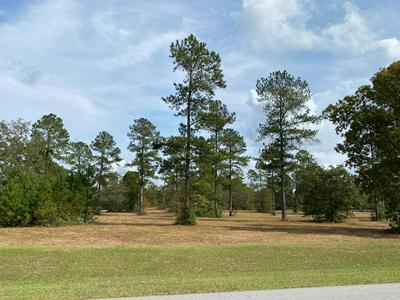 LOT 58 THREE RUNS PLANTATION DRIVE, AIKEN, SC 29803 - Photo 1