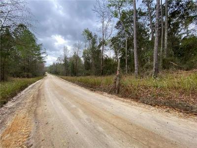 COUNTY RD 121, Hilliard, FL 32046 - Photo 2