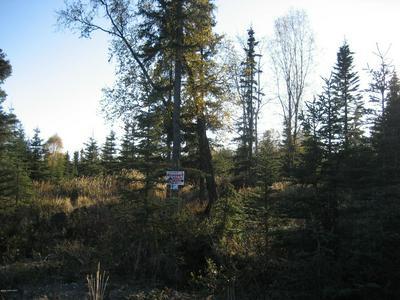 L10A B2 BRUIN CIRCLE, Kasilof, AK 99610 - Photo 1