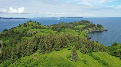 L1 THE POINT - CLIFF POINT ESTATE, Kodiak, AK 99615 - Photo 2