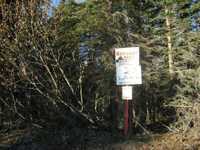 L2 B1 TOLUM ROAD, Kasilof, AK 99610 - Photo 2