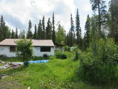 48565 SANDHILL CRANE RD N, Soldotna, AK 99669 - Photo 2
