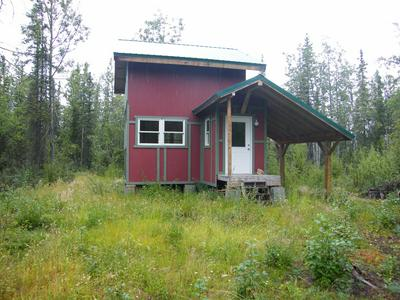 L10 WILLOW LOOP ROAD, Copper Center, AK 99573 - Photo 2