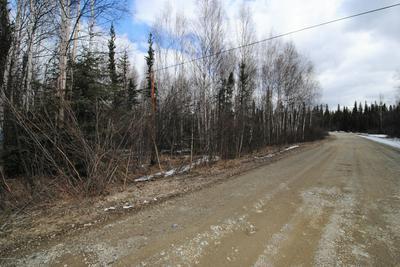 L10 SOLITA ROAD, Salcha, AK 99714 - Photo 2