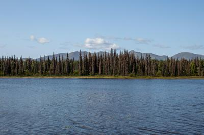 TR C NO ROAD, Remote, AK 99000 - Photo 2