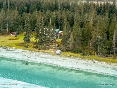 26000 NW KALGIN ISLAND TRAIL, Remote, AK 99000 - Photo 2