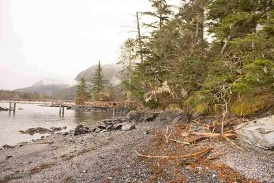L2-3 QUIANA ISLAND, SITKA, AK 99835 - Photo 2