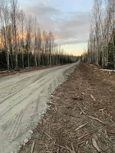 L1BA RAYA ROAD, Delta Junction, AK 99737 - Photo 1
