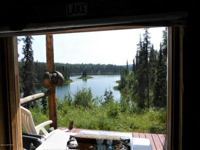 26783 S MASTODON RD, Talkeetna, AK 99676 - Photo 2