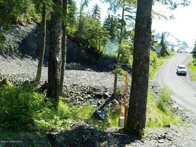 103 CABIN RIDGE ROAD, Cordova, AK 99574 - Photo 2