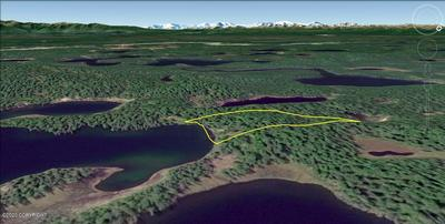 TRACT A UNNAMED LAKE (NO ROAD), Remote, AK 99000 - Photo 1